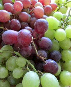 Owoce_winogrona
