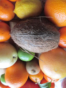 Owoce_zima